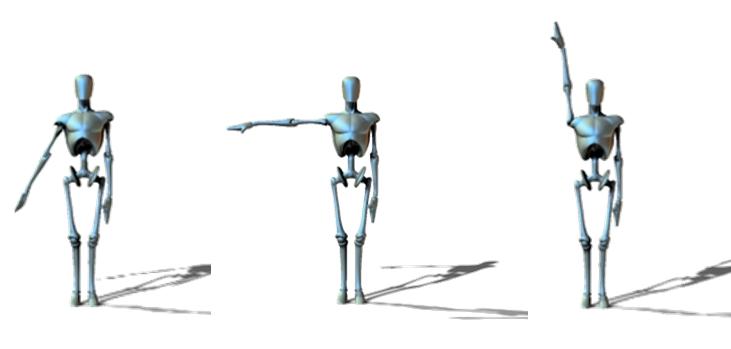 Abducción de hombro: Fases y músculos – Respiro Deporte